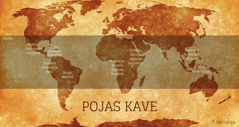 pojas_kave_coffee_belt_kava_kavopija