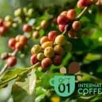 Međunarodni dan kave 2019.